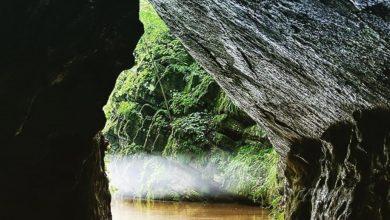 Penn's Cave & Wildlife Park